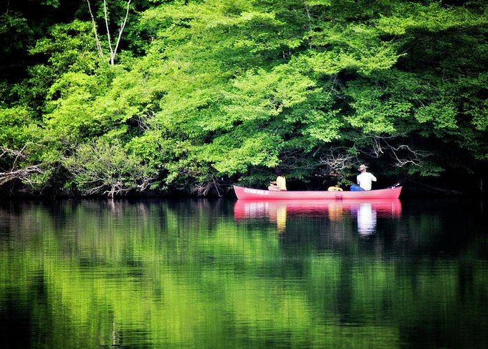 Lake Greeting Card featuring the photograph Fishing On Shady by Lana Trussell