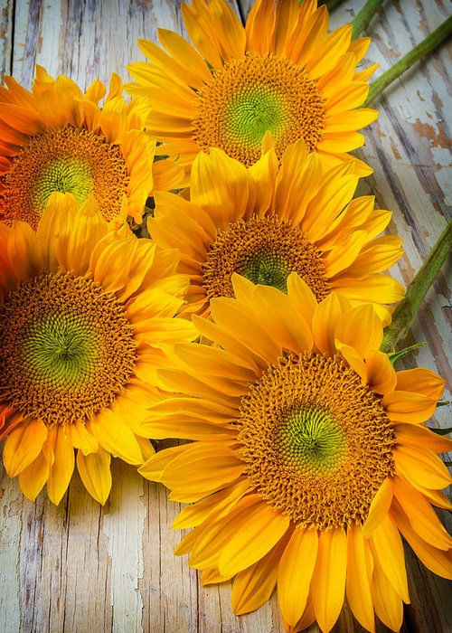 Single Greeting Card featuring the photograph Five Moody Sunflowers by Garry Gay