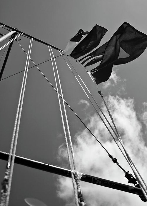 Charleston Sc Greeting Card featuring the photograph Flags In The Wind by Witt Lacy