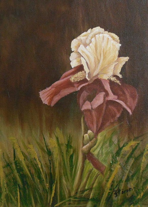 Floral Greeting Card featuring the painting Flaming Bearded Iris by Barbara Harper