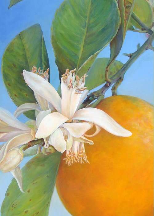 Floral Painting Greeting Card featuring the painting Fleurs d oranges by Muriel Dolemieux