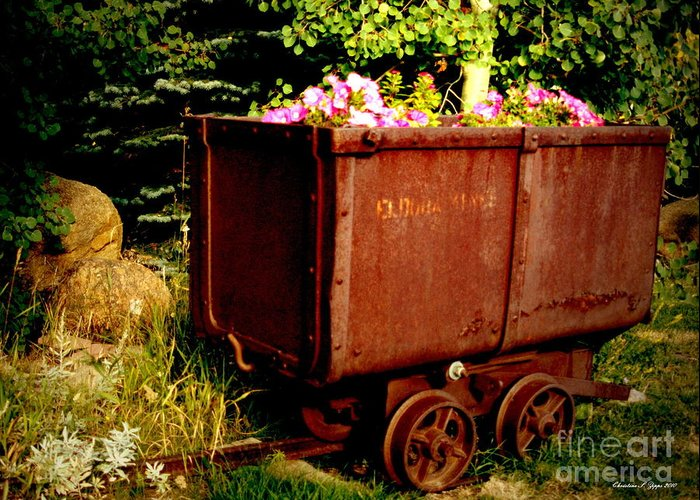 Rustic Greeting Card featuring the photograph Fleurs In Rustic Ore Car by Christine S Zipps