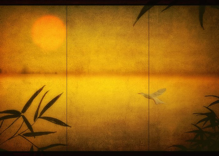 Triptych Greeting Card featuring the photograph Flight Of A Tern by Tom York Images