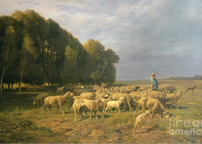 Flock Greeting Card featuring the painting Flock Of Sheep In A Landscape by Charles Emile Jacque