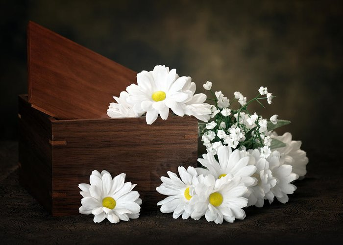 Flowers Greeting Card featuring the photograph Flower Box by Tom Mc Nemar