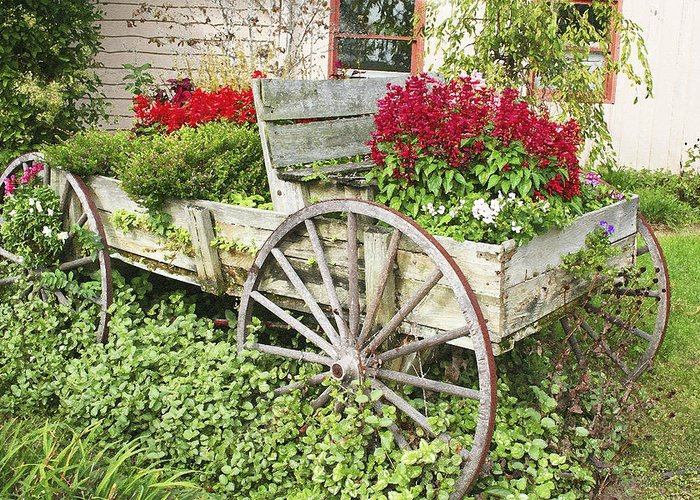 Wagon Greeting Card featuring the photograph Flower Wagon by Margie Wildblood