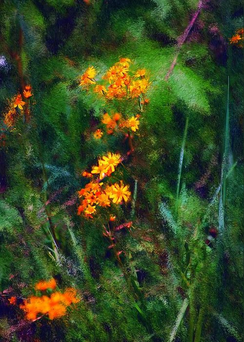 Digital Photography Greeting Card featuring the digital art Flowers In The Woods At The Haciendia by David Lane