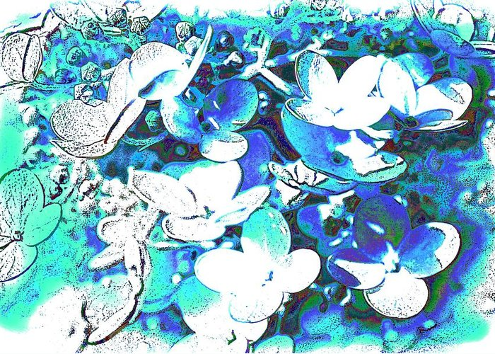 Graphics Greeting Card featuring the photograph Flowers With A Difference by TinaDeFortunata