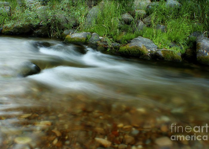 River Greeting Card featuring the photograph Flowing by Idaho Scenic Images Linda Lantzy