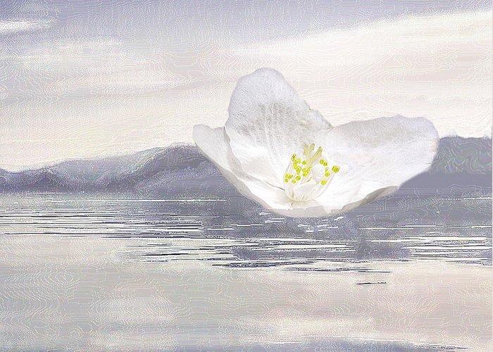 Silverlake Greeting Card featuring the digital art Flying Flower by Viktor SavchenkoThe flower flying on Blue WooThe flower flying on Blue Woodd