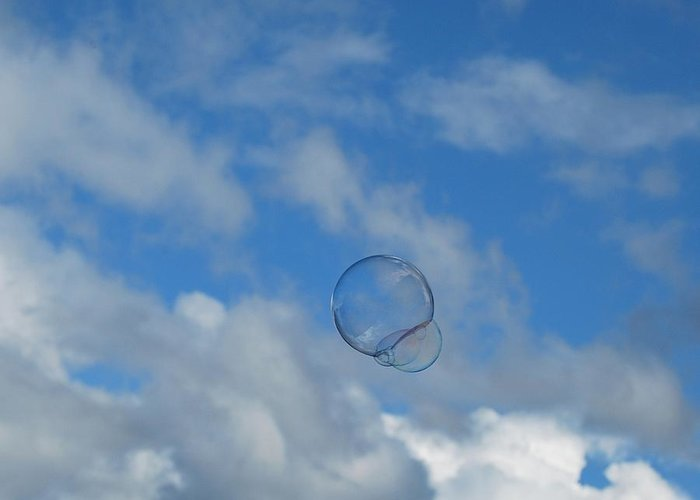 Bubbles Greeting Card featuring the photograph Flying Free by Marilynne Bull