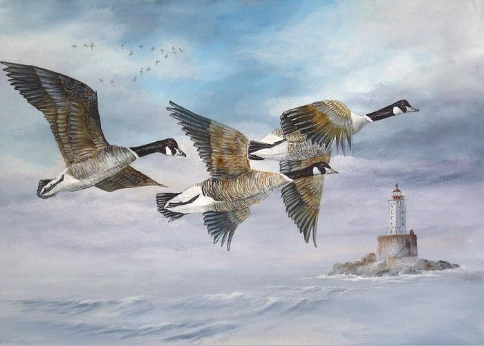 Aleutian Geese Greeting Card featuring the painting Flying Home by Lynne Parker