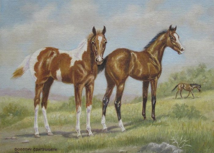 Greeting Card featuring the painting Foals In Pasture by Dorothy Coatsworth