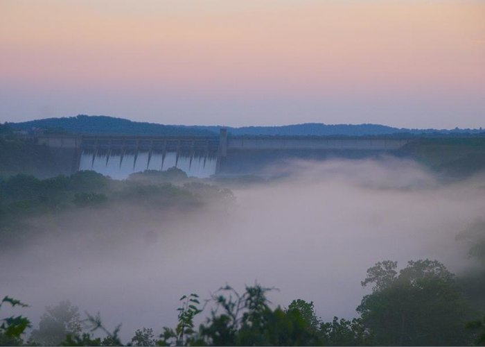 Fog Greeting Card featuring the photograph Fog at Dusk by Toni Berry