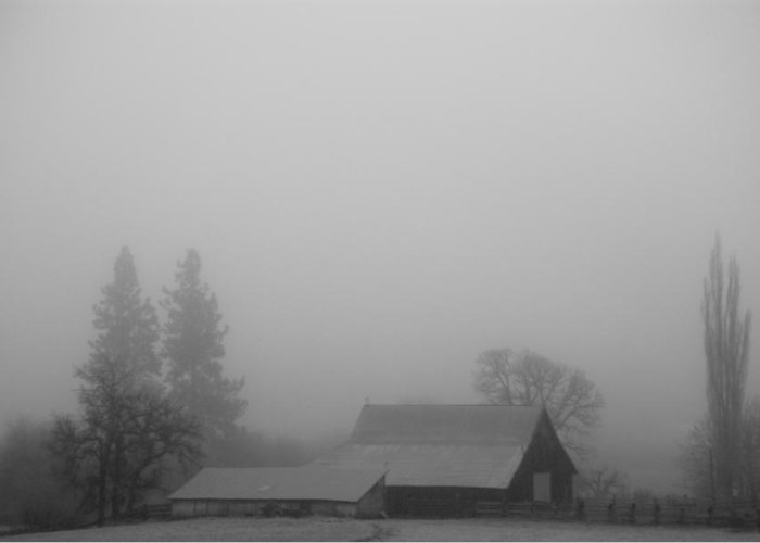 Barn Greeting Card featuring the photograph Fog In The Morning by Dale Stillman