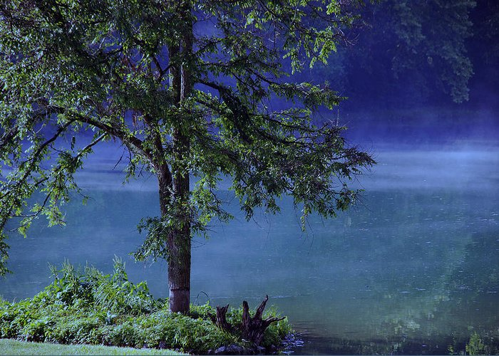 Landscape Greeting Card featuring the photograph Fog Over The Pond by Susanne Van Hulst