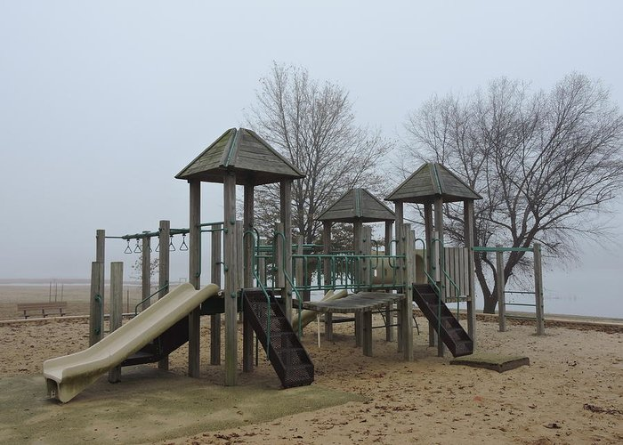 Playground Greeting Card featuring the photograph Foggy by Delana Epperson