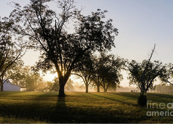 Barn Greeting Card featuring the photograph Foggy Morning 2 by Andrea Anderegg