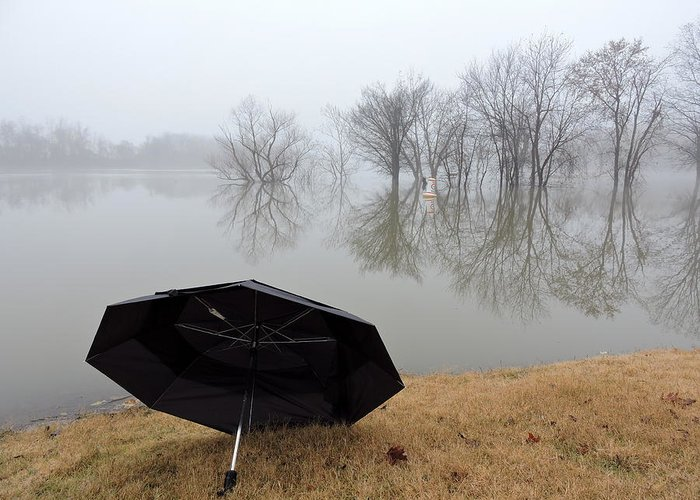 Fog Greeting Card featuring the photograph Foggy Morning by Delana Epperson