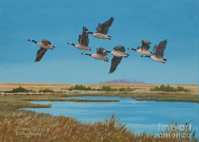 Canada Geese Greeting Card featuring the painting Follow The Leader by Diane Ellingham