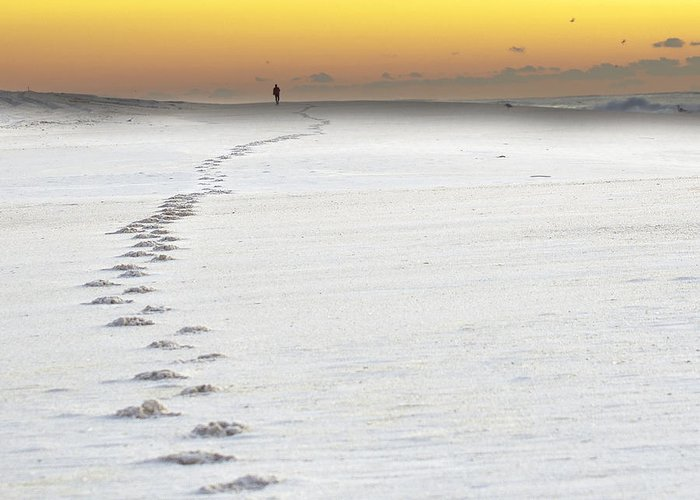 Sunrise Greeting Card featuring the photograph Footprints To Sunrise by Vicki Jauron