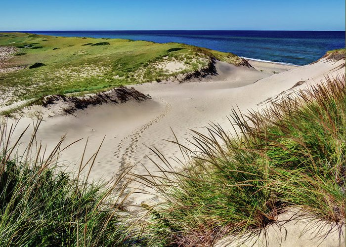 New England Greeting Card featuring the photograph Footsteps In The Dunes by Dave Thompsen