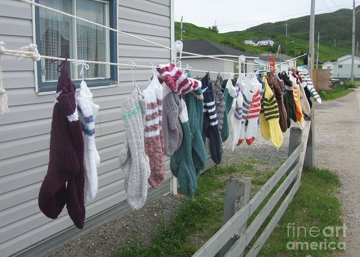 Knitted Socks Newfoundland Greeting Card featuring the photograph For Sale by Seon-Jeong Kim