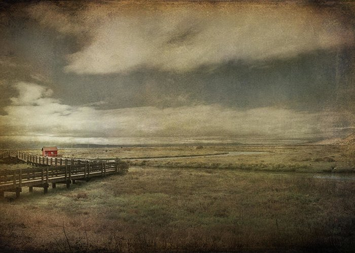 Landscape Greeting Card featuring the photograph For The Lonely Souls by Laurie Search