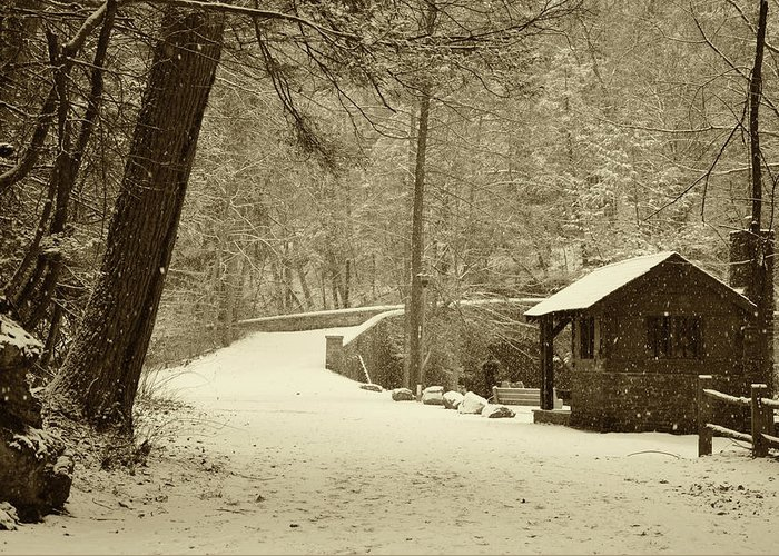 Wissahickon Greeting Card featuring the photograph Forbidden Drive In Winter by Bill Cannon