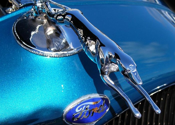 Classic Cars Greeting Card featuring the photograph Ford Greyhound Hood Ornament by Patricia L Davidson