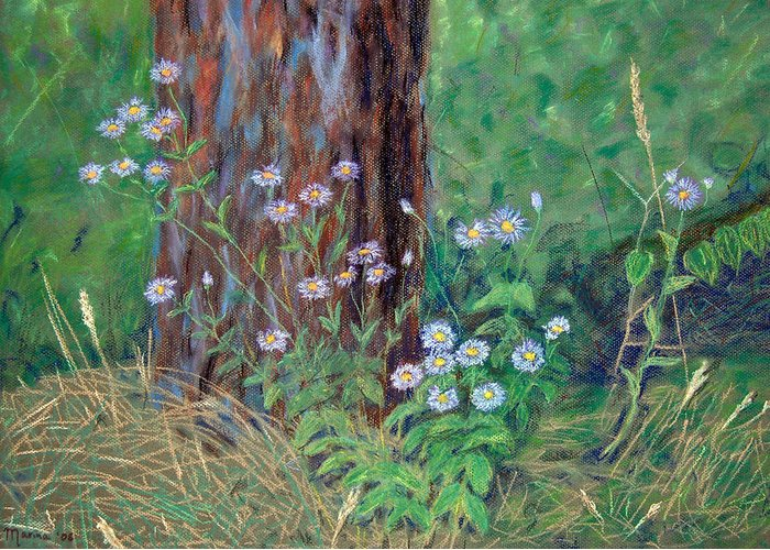 Landscapes Greeting Card featuring the pastel Forest Flowers by Marina Garrison