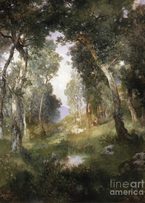 Forest Greeting Card featuring the painting Forest Glade by Thomas Moran