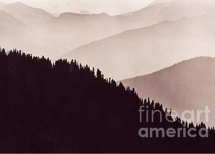 Landscape Greeting Card featuring the photograph Forest Ridge Washington Cascades by Michael Ziegler
