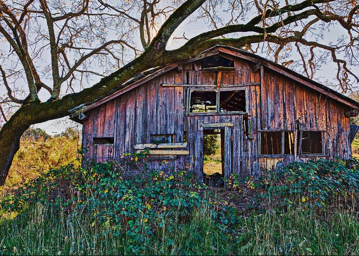 Barn Greeting Card featuring the photograph Forgotten Barn by Garry Gay