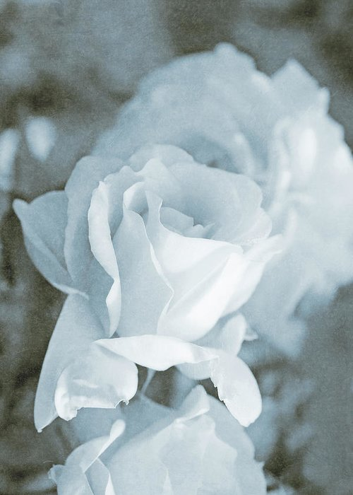 Rose Greeting Card featuring the photograph Forgotten Roses Blue by Jennie Marie Schell