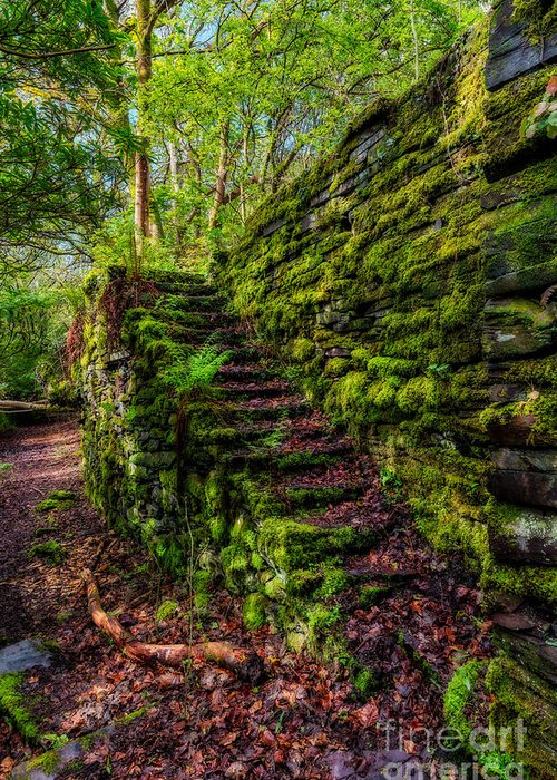 Stone Steps Digital Art Greeting Cards