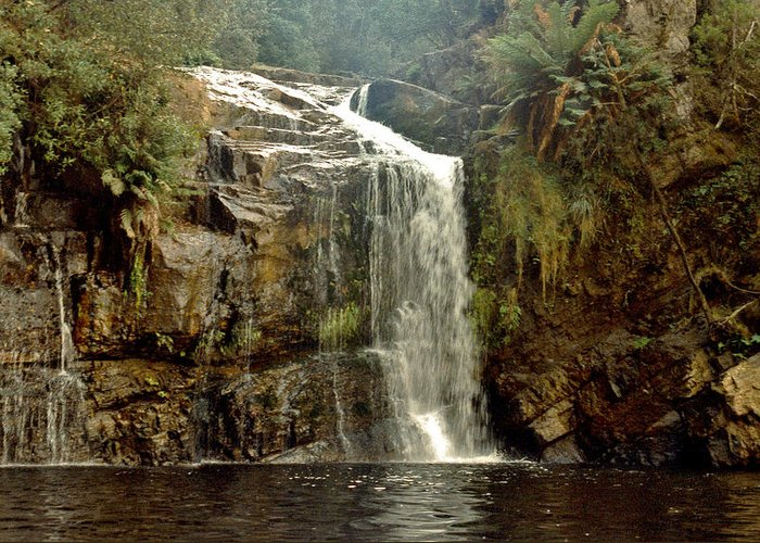 Waterfalls Greeting Card featuring the photograph Forth Falls Tasmania by Sarah King