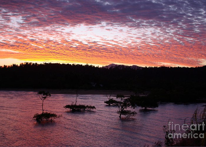 Landscape Greeting Card featuring the photograph Four Elements Sunset Sequence 3 Coconuts Qld by Kerryn Madsen - Pietsch