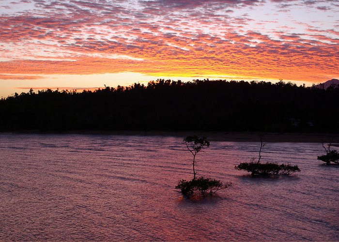 Landscape Greeting Card featuring the photograph Four Elements Sunset Sequence 5 Coconuts Qld by Kerryn Madsen - Pietsch
