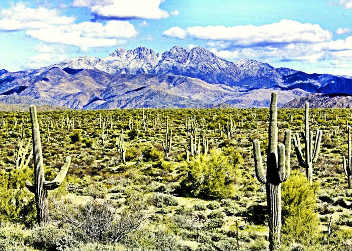 Photography Greeting Card featuring the photograph Four Peaks by Sharon Broucek