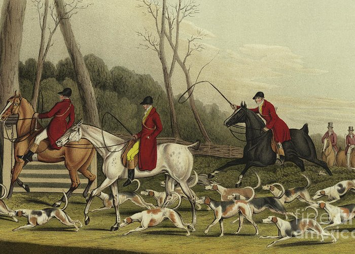 Fox Hunting Going Into Cover Greeting Card featuring the painting Fox Hunting Going Into Cover by Henry Thomas Alken