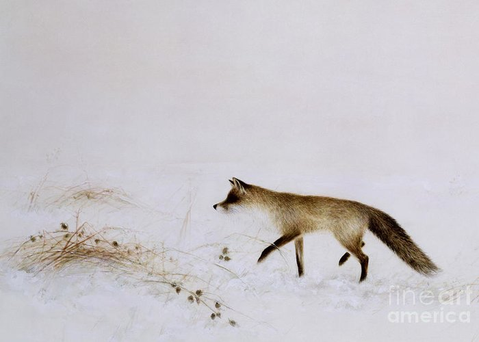 White; Alone; Renard; Neige; Snow; Fox; Animal; Winter; Landscape Greeting Card featuring the painting Fox In Snow by Jane Neville