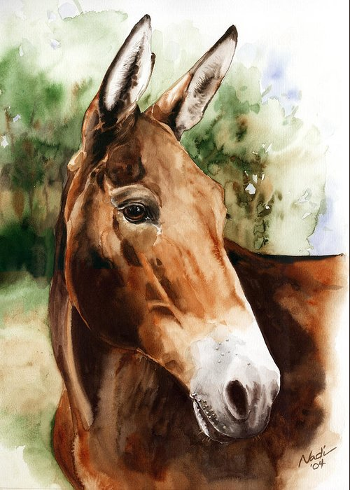Mule Greeting Card featuring the painting Francis by Nadi Spencer