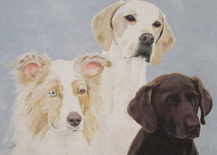 Pet Portrait Greeting Card featuring the painting Fran's Dogs by Janice M Booth