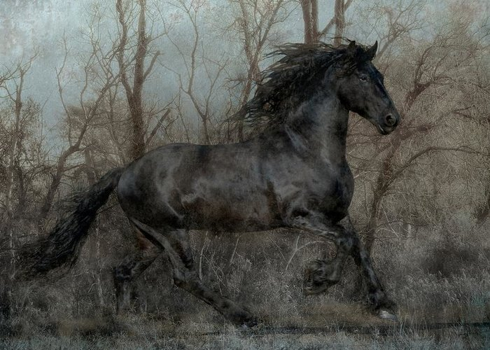 Digital Art Greeting Card featuring the photograph Free II by Jean Hildebrant