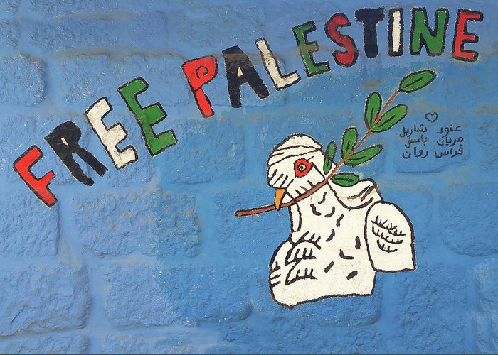 Dove Greeting Card featuring the photograph Free Palestine Peace by Munir Alawi