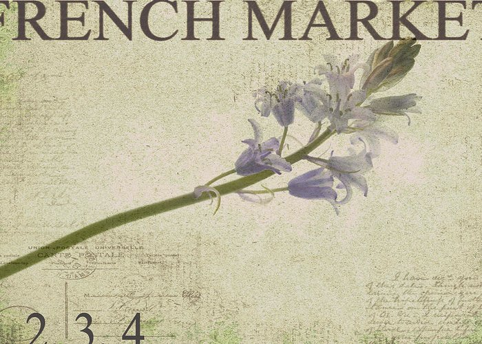 Purple Greeting Card featuring the photograph French Market Series F by Rebecca Cozart