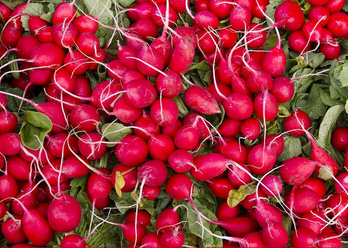 Agriculture Greeting Card featuring the photograph Fresh Red Radishes by John Trax