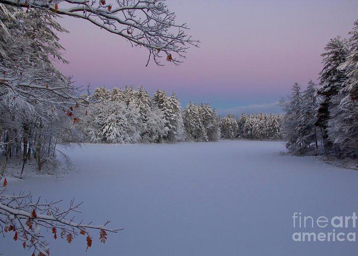 Rual Landscapes Greeting Card featuring the photograph Fresh Snow by Diana Nault