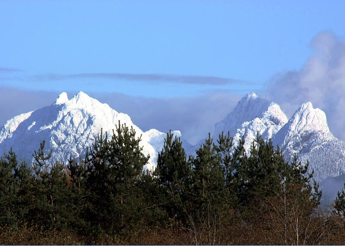 Snow Greeting Card featuring the photograph Fresh Snow On Golden Ears by Barbara White